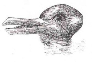 Rabbit Duck